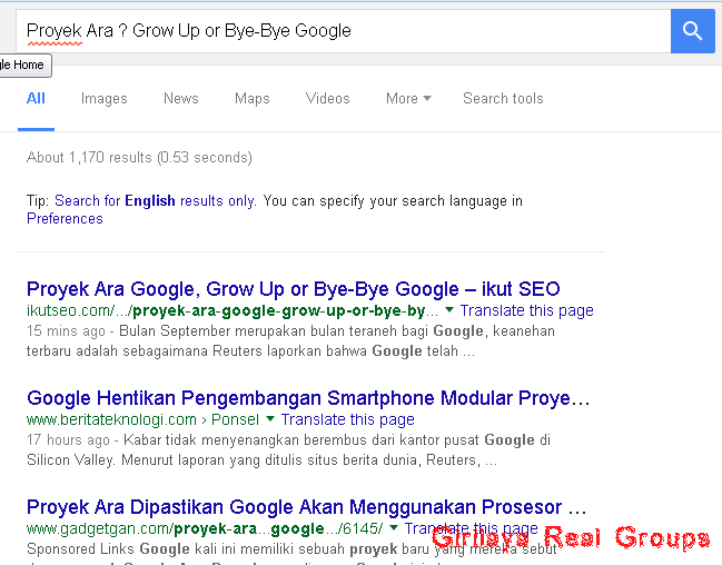 Proyek Ara, Grow Up or Bye Google