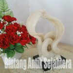 Cobra Tarung Marmer