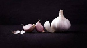 Bawang Putih garlic